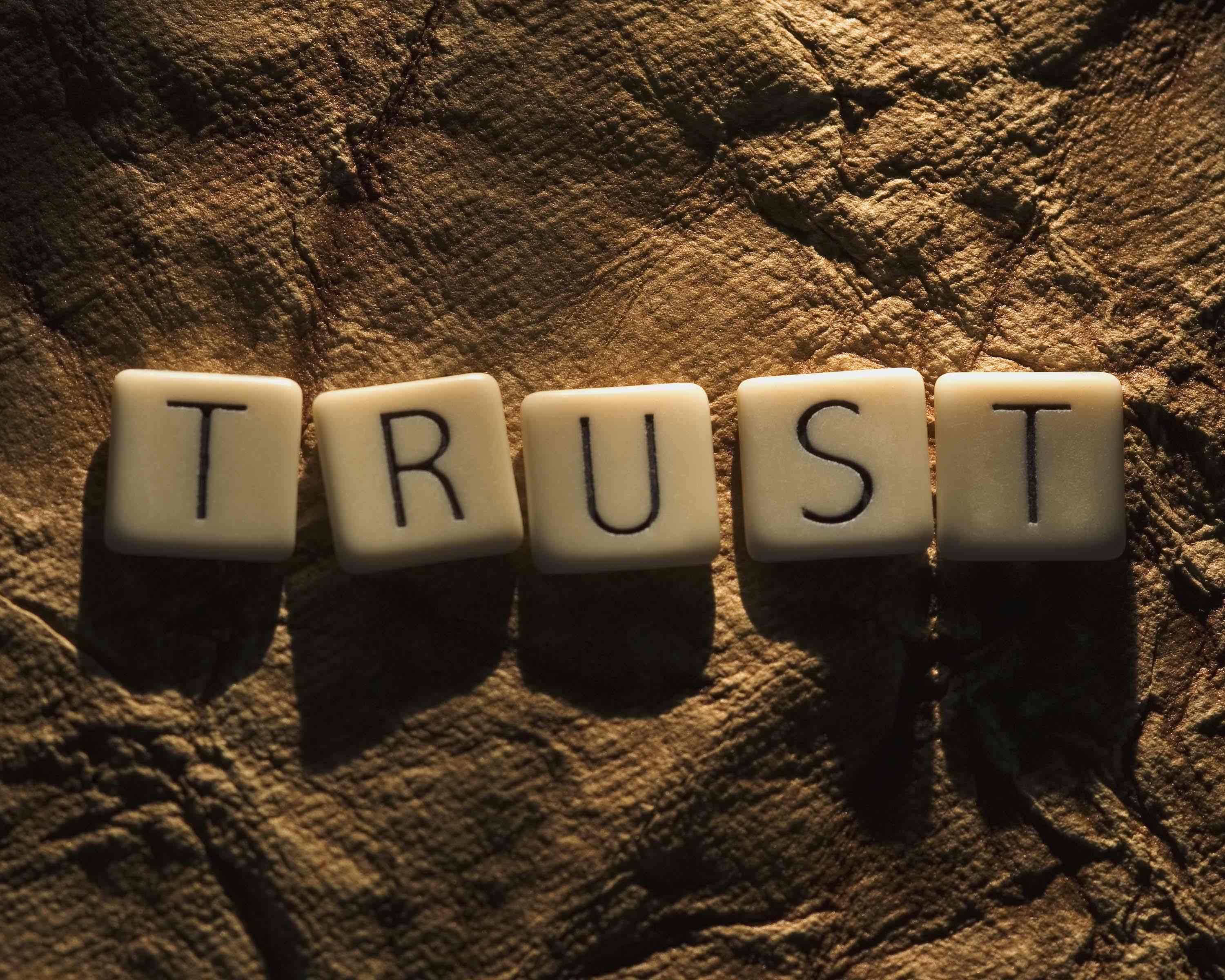 trust  Customers Demand Brands to Prove Themselves Trustworthy