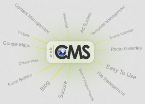 web cms 300x214 5 Things you must know before Buying a Web Content Management System